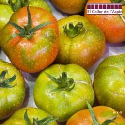 Tomates del Benach